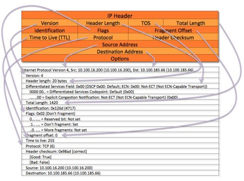 IP Header Wireshark
