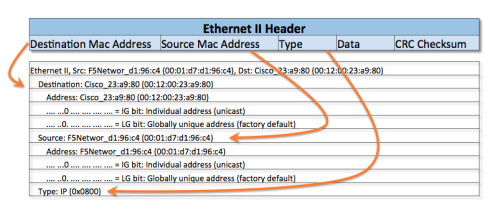 Ethernet II Header and Capture