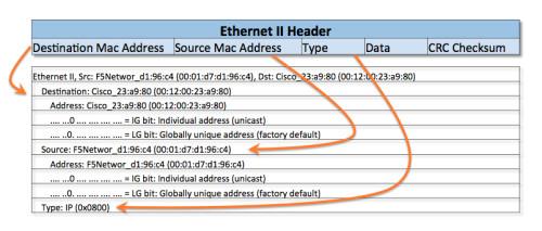 Ethernet II Header and Capture