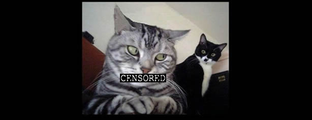 Censored Kitty Cat